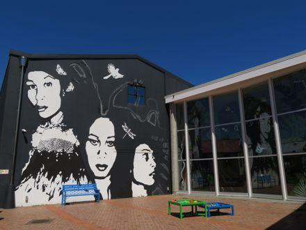 """Reflections"" mural, Te Manawa"