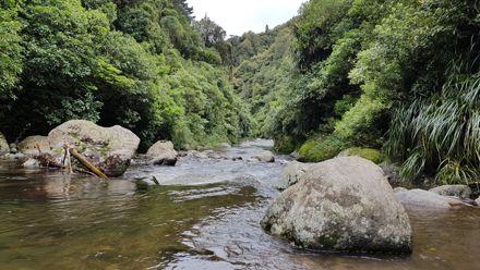 Kahuterawa Stream from Argyle Rocks