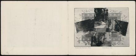 Bennett & Co's Souvenir Views of Palmerston North 4