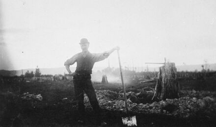 Frederick Johansen removing stumps from property by hand