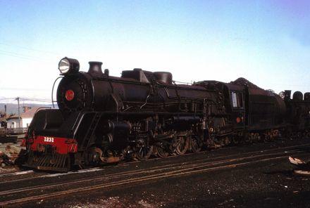 Train J 1231