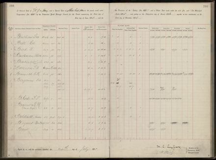 Palmerston North Rate Book, 1893 - 1896, 271