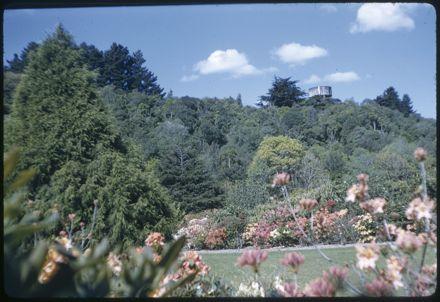 Victoria Esplanade Gardens - Flowers