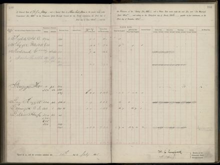 Palmerston North Rate Book, 1893 - 1896, 291