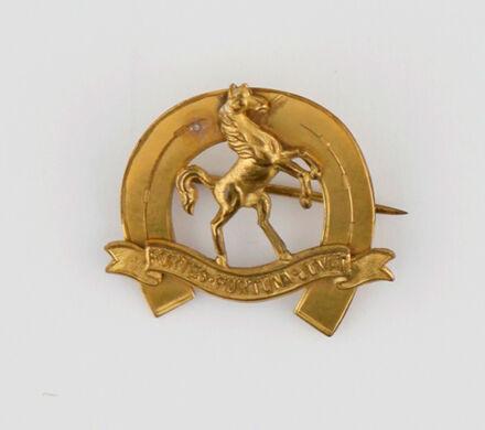 9th (Wellington East Coast) Squadron Pin