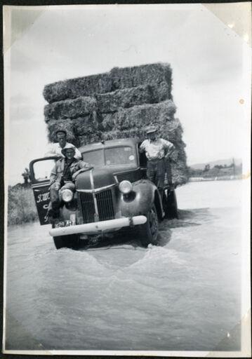 Men rescuing hay bales, Rangiotu