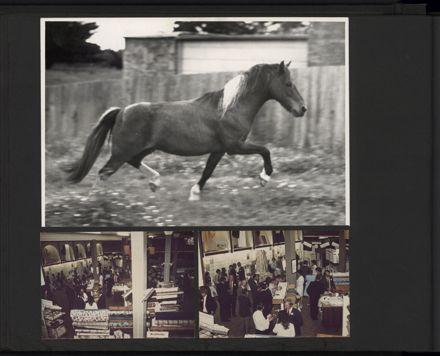 Alexander Clark Photograph Album - page 8