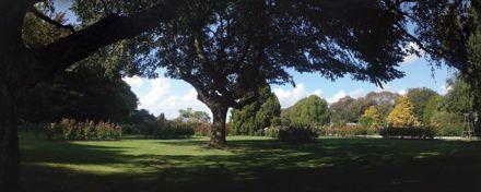 Victoria Esplanade Rose Gardens