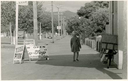 Fitzherbert Avenue Looking Towards the Bridge
