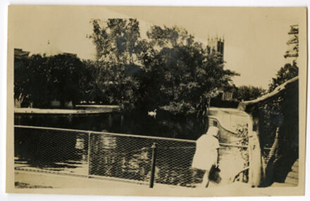 Andrews Collection: Duck Pond, The Square