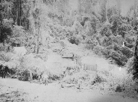 Bushfeller's camp, Komako, Pohangina Valley