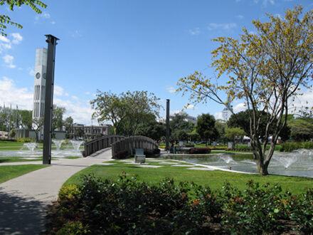 The Square gardens