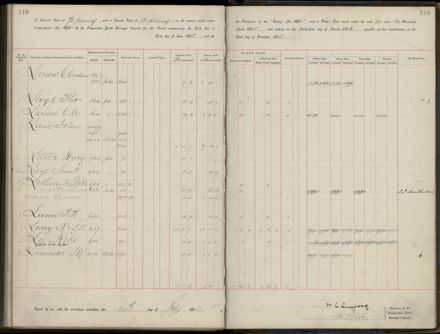 Palmerston North Rate Book, 1893 - 1896, 315