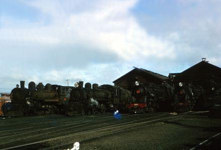 Locomotives in the Palmerston North Railway Yards