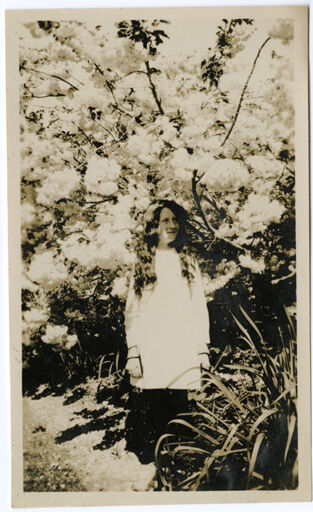 Andrews Collection: Young Woman under a Flowering Tree