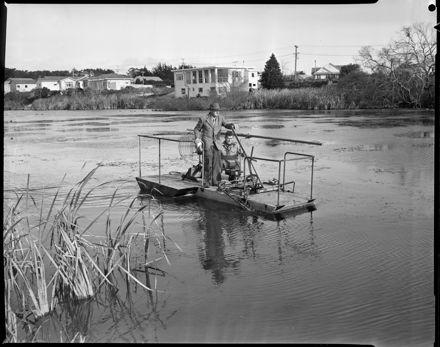 """""""Cutting Weed on Centennial Lake"""""""