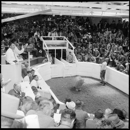 """Large Crowd Attends Ram Fair"""