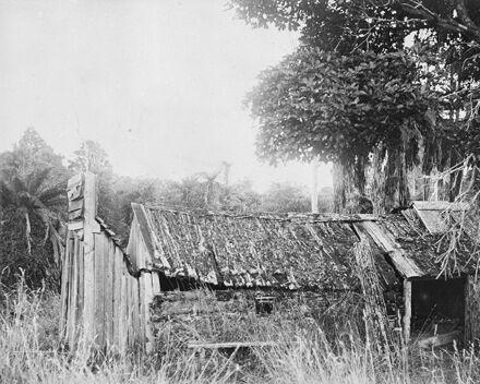 Derelict pioneer home, Bunnythorpe
