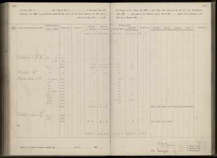 Palmerston North Rate Book, 1893 - 1896, 247