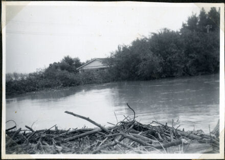 Trapped Debris, Rangiotu Flood