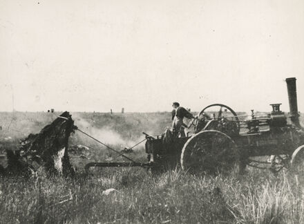 Removing tree stumps with a traction engine