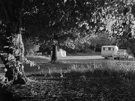Camping at the Municipal Camping Ground, Dittmer Drive
