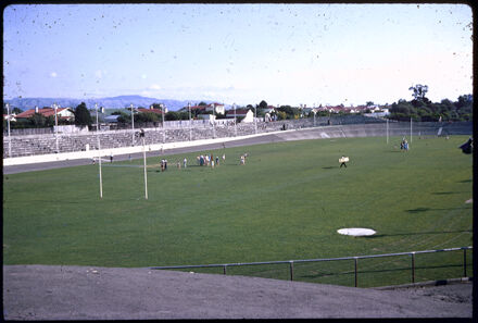 Athletic Field, Memorial Park
