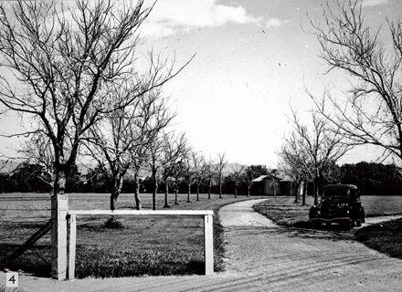 Milverton Park
