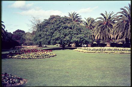 The Esplanade Gardens
