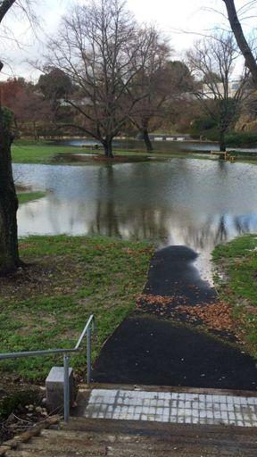 Memorial Park, 2015 Floods