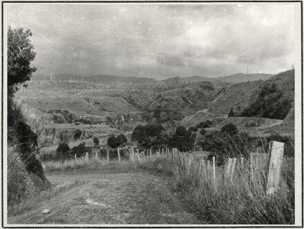 Pohangina Valley Scene