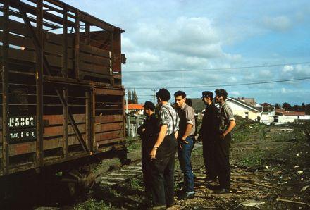 Railways Staff and Sheep Wagon