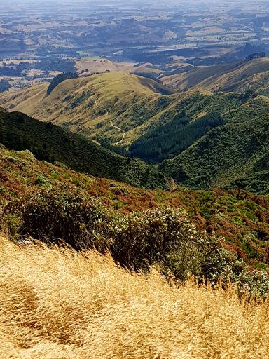 Wharite Peak