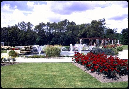 Esplanade Rose garden