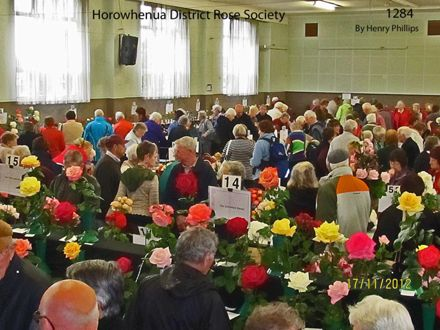 IMG_1284 Horowhenua District Rose Society