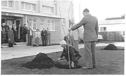 Planting Tree Outside Memorial Hall, Foxton