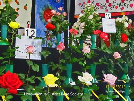 IMG_1232 Horowhenua District Rose Society
