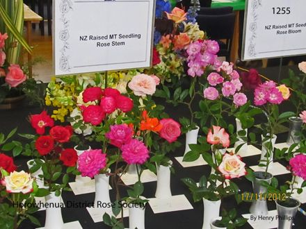 IMG_1255 Horowhenua District Rose Society