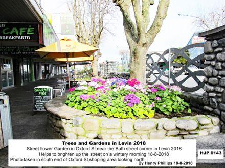 HJP 0143 Street flower Garden in Oxford St near the Bath street corner in Levin 2018