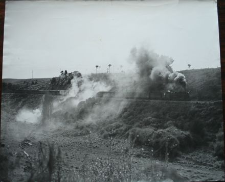 Steam locomotive pulling freight train, Forest Lakes area ?
