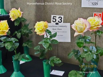 IMG_1225 Horowhenua District Rose Society