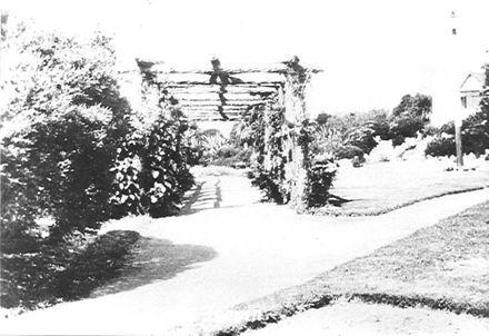 Public Gardens, Levin, c.1926 ?