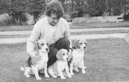 Ivy Jordon training Beagle dogs (3)