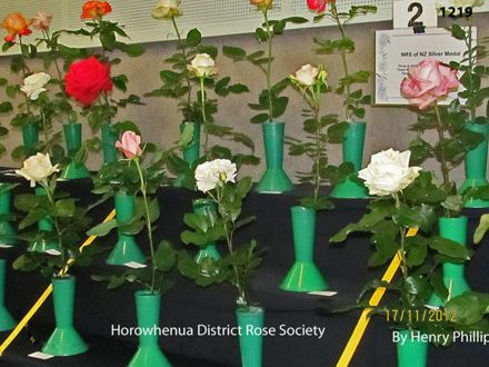 IMG_1219 Horowhenua District Rose Society