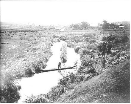 Hokio Stream, H.H. McDonald in canoe & 'Lakeside'