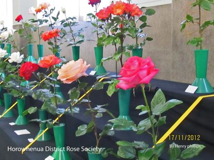 IMG_1221 Horowhenua District Rose Society