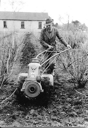 S. Richardson using Simar cultivator, 1952