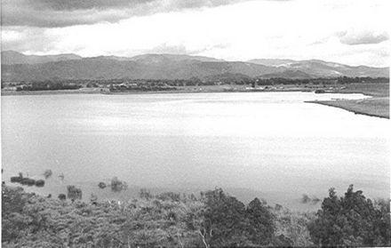 Lake Horowhenua, Southern End