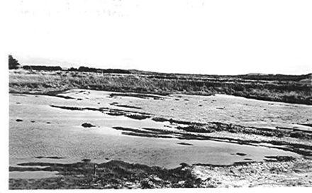 Flaxmill Ponding Area