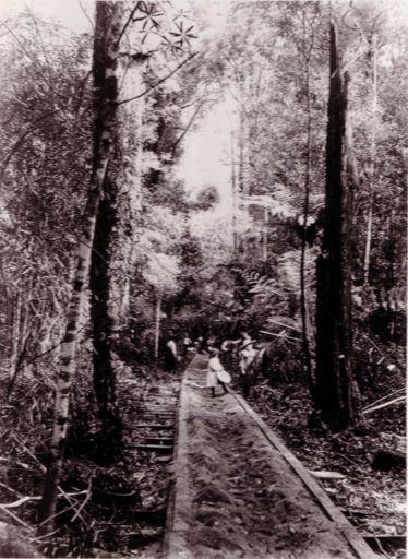 Bartholomew & Dunn tramline, W.G. Adkin farm, c.1888-95